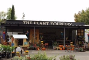 plant foundry